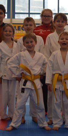Einsteiger ganz vorne beim Seat Karate Cup
