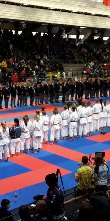 Starke Leistung bei der international Banzai Cup Open