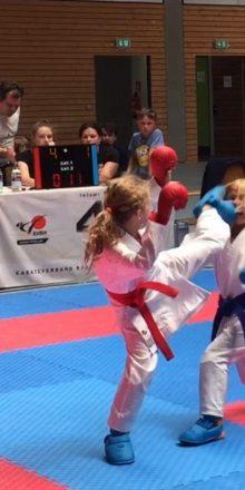 Rhein-Neckar Karateka auf Punktjagt bei KVBW Cup Serie