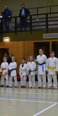 Karate Winter Games